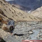 020 Anreise Puh Base Sherpa